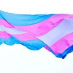 De belles avancées au Parlement pour l'égalité des droits des couples de même sexe mais un recul conséquent pour les droits des mineur·e·x·s trans*